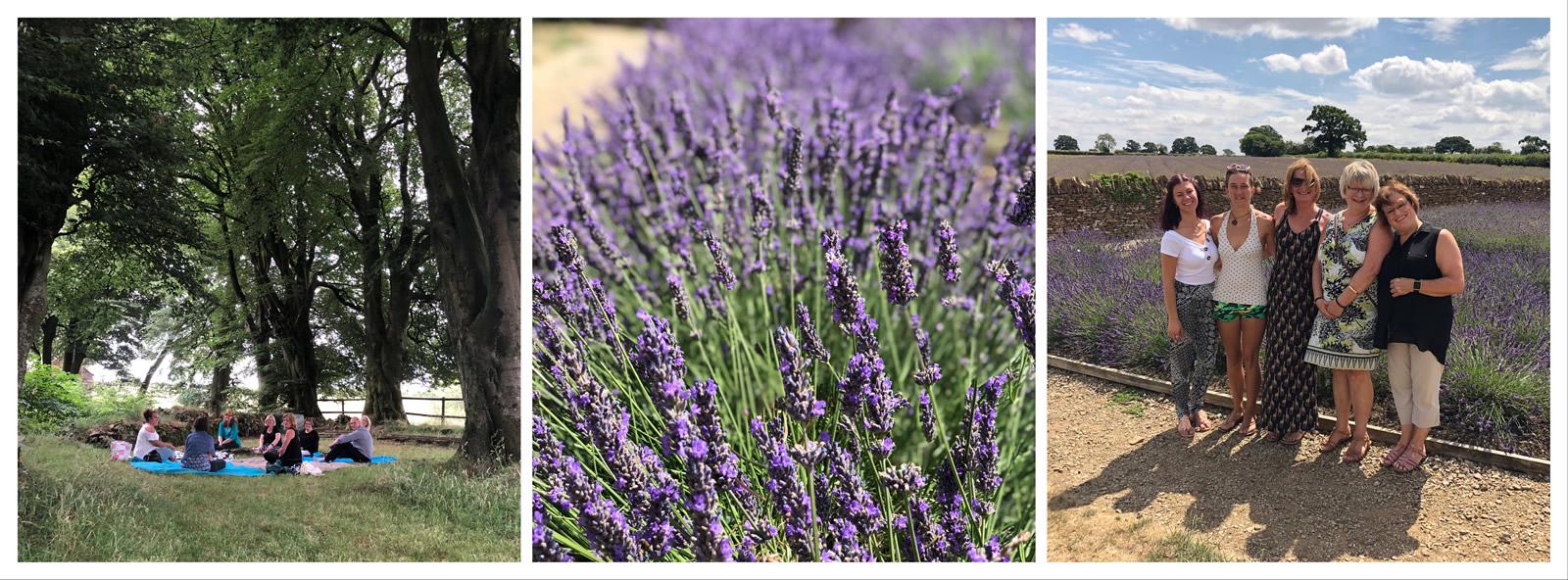 Tree lavender workshops